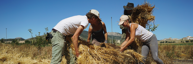 Ecosystem Restoration Camps in Alti Plano (Spain) | Photo: Cori Chong