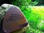 Quote in the woods around the conference centre. Life can only be understood backwards - but it must be lived forwards.